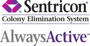 get rid of termites hilton head sc